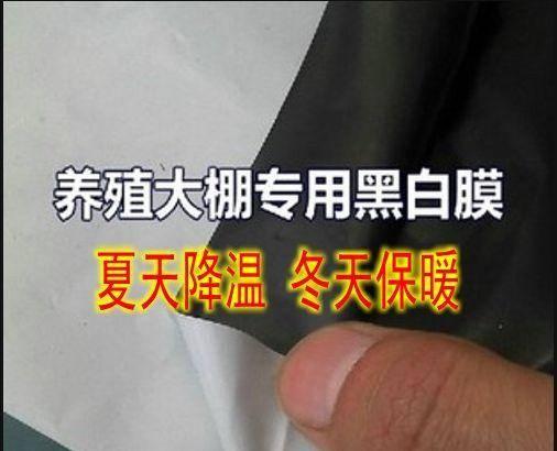 天津市静海区 塑料膜黑白膜长寿膜地膜