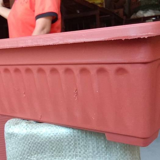 广东省广州市荔湾区 长方形种植槽,花盆容器。