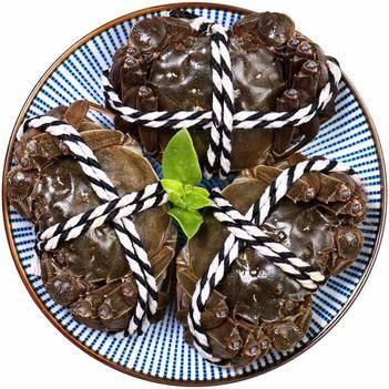 陽澄湖大閘蟹,二兩五母三兩五公4對裝只要118,限購兩份