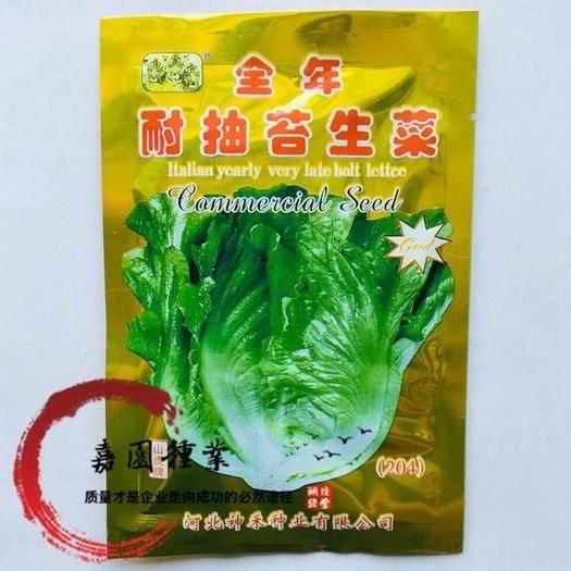 四川省南充市西充县生菜籽 全年耐抽苔生菜种子包邮