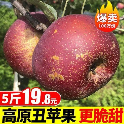 四川省成都市大邑縣 【脆甜多汁】包郵 新鮮水果8斤鹽源丑蘋果紅富士水果一件代發