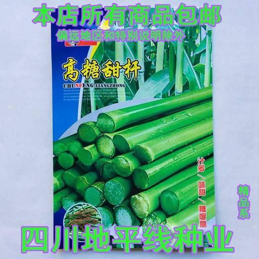 四川省南充市嘉陵區 甜高粱種子