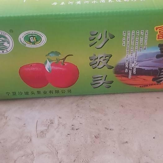 寧夏回族自治區中衛市沙坡頭區紅富士蘋果 紅富士……純天然無公害!