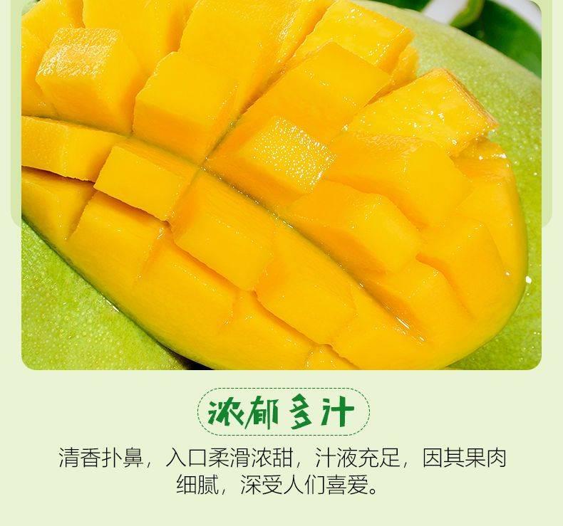 越南玉芒果大青芒5/10斤裝包郵當季時令新鮮水果青芒果