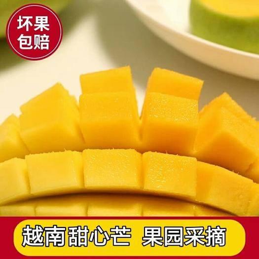 甜心芒 果园采摘 香甜细腻5/8/9斤装