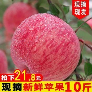 (雙十一促銷價)正宗紅富士新鮮蘋果連箱10斤包郵