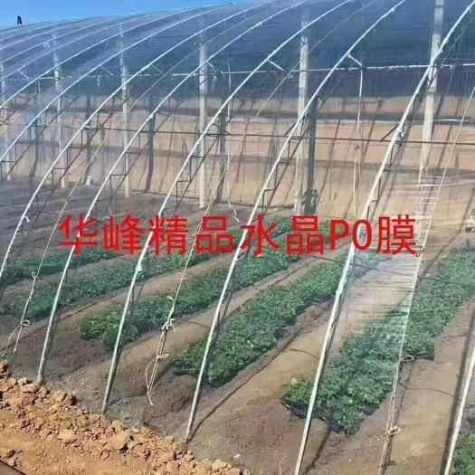 山東省濰坊市青州市其它農資 農用棚膜