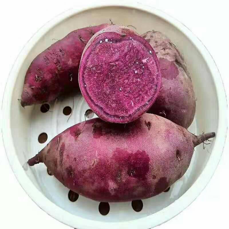 [紫罗兰紫薯批发]紫罗兰紫薯  营养丰富的紫薯,让你的餐桌多一点色彩价格17.8元/箱