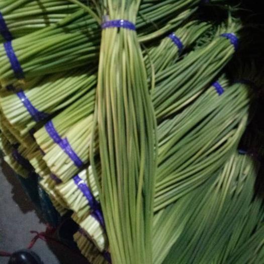 山東省濟寧市金鄉縣 精品蒜苔、產地直銷、價格便宜、專業加工