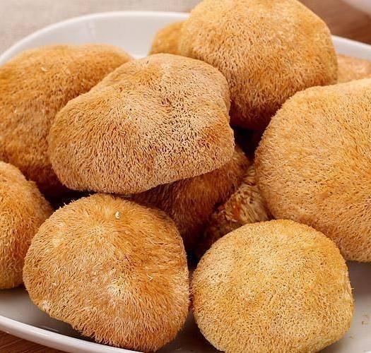 河北省保定市安國市 猴頭菇
