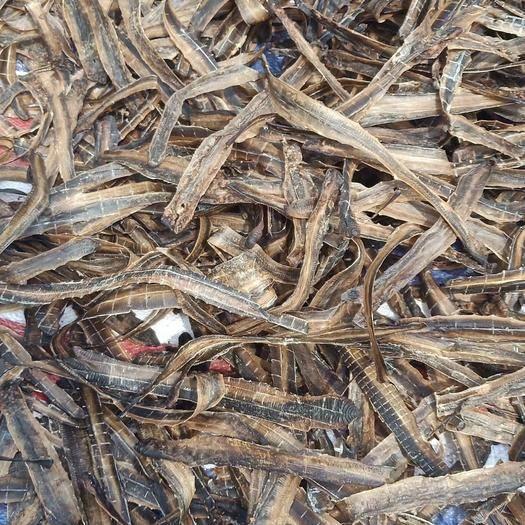 廣西壯族自治區玉林市玉州區干蚯蚓 全開無泥大條