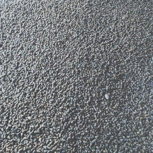 安徽省宿州市泗县 新鲜螺蛳,需要的抓紧时间下单