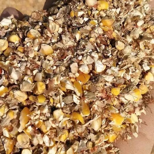 内蒙古自治区呼伦贝尔市莫力达瓦达斡尔族自治旗玉米渣 玉米下脚料大量供应