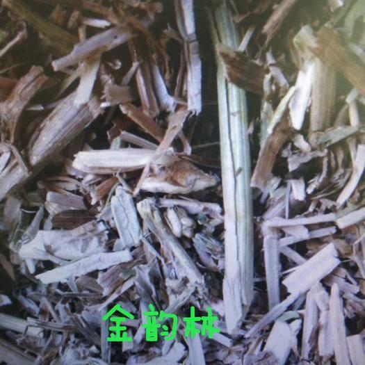 河北省保定市安國市菊苣 莖 產地貨源 平價直銷 無硫 袋裝