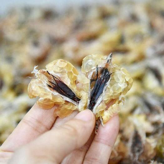 河北省保定市安國市 林蛙油 東北吉林野生林蛙油 雪蛤油正品滋補適合各年齡段人群