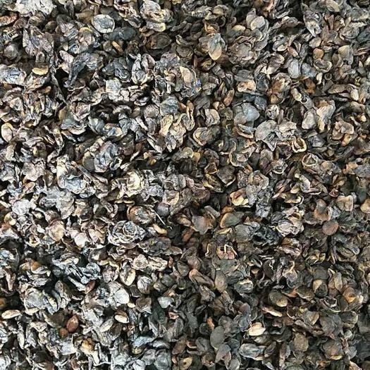 新疆維吾爾自治區喀什地區喀什市 庫存積壓純天然無公害綠色食品杏肉