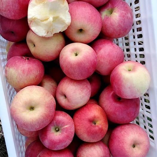 內蒙古自治區赤峰市寧城縣 寧城蘋果,酸甜適口,是饋贈朋友的禮品