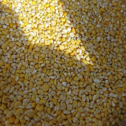 辽宁省沈阳市和平区玉米渣 东北粘玉米碴子~口味香甜
