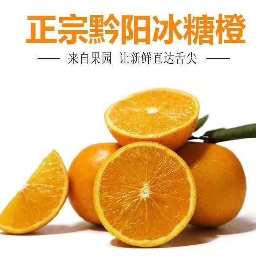【现货11.16日首发】黔阳冰糖橙  纯甜多汁  一件代发