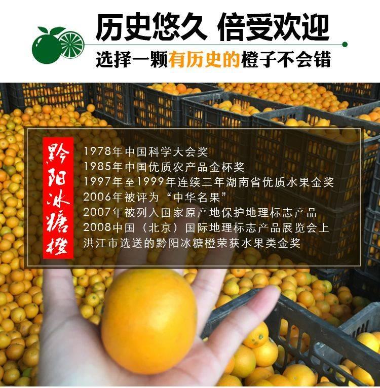 黔陽冰糖橙 【預售11月20日發貨】湖南冰糖橙 邀你來  一件代發