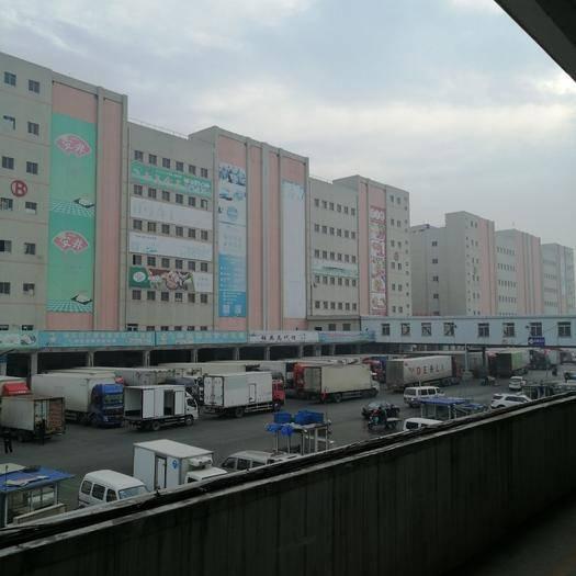 江蘇省南京市六合區冷凍庫租賃 十八萬噸超大型冷庫商鋪招租