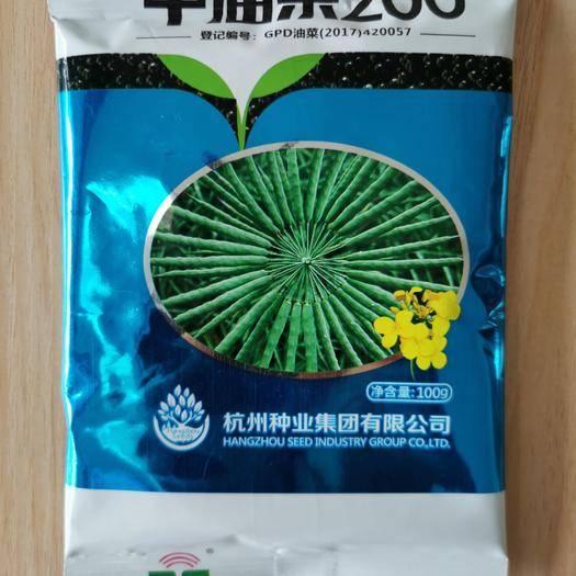 浙江省温州市文成县油菜籽 油菜种子中油杂200高产出油率高甘蓝型杂交种高含油量双低品种