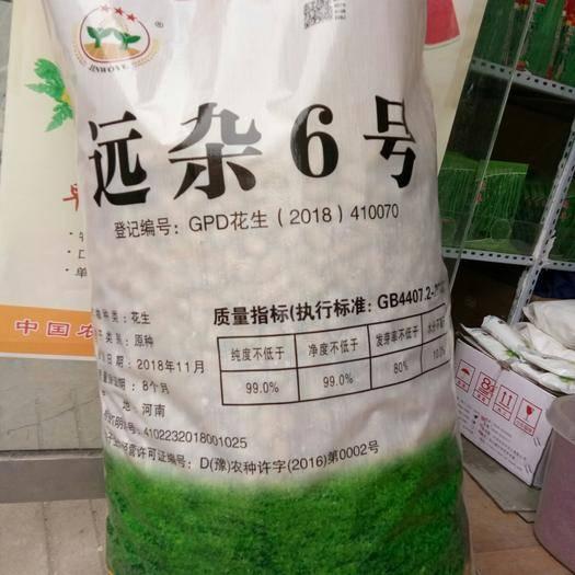 河南省郑州市惠济区 国审远杂6号花生种子