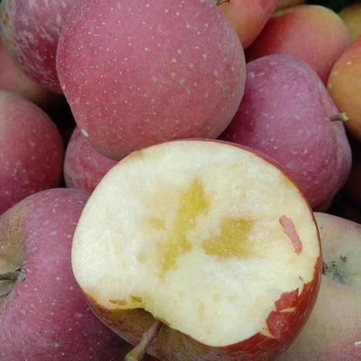 云南省昭通市昭陽區昭通蘋果 品質水果源自于大自然的饋贈。