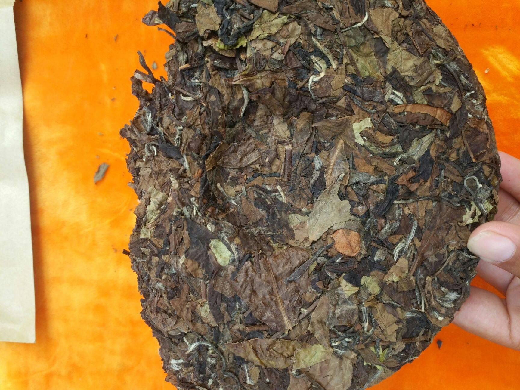 福鼎白茶 純手工采摘,真正高山茶葉廠家,不是平原茶以次充好一分價一分貨
