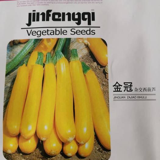 山东省济南市槐荫区 香蕉西葫芦种子蔬菜种子