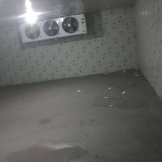 廣東省珠海市香洲區冷凍庫租賃 冷庫自已不用建,租給你,你建那都行,最低30元/一平方每月