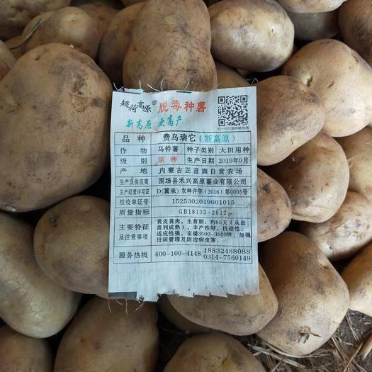 山东省青岛市即墨区 常年批发内蒙雪川公司、新高原公司土豆种薯