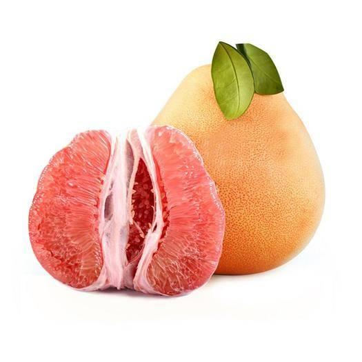 江西省赣州市安远县三红蜜柚苗 正宗嫁接红蜜柚苗。