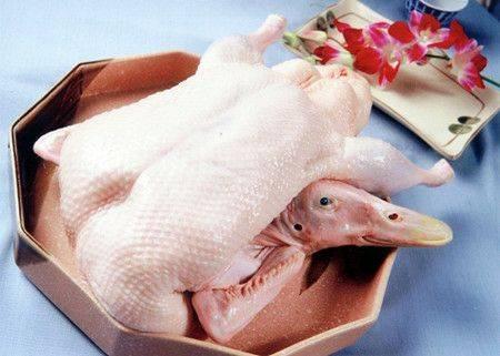 [白条鸭批发] 白条鸭,一箱22斤价格8元/斤