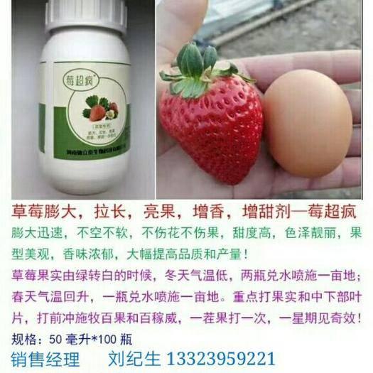 河南省漯河市郾城區其它農資 莓超瘋~~草莓果實膨大、著色、增甜、提香、拉長、提前上市