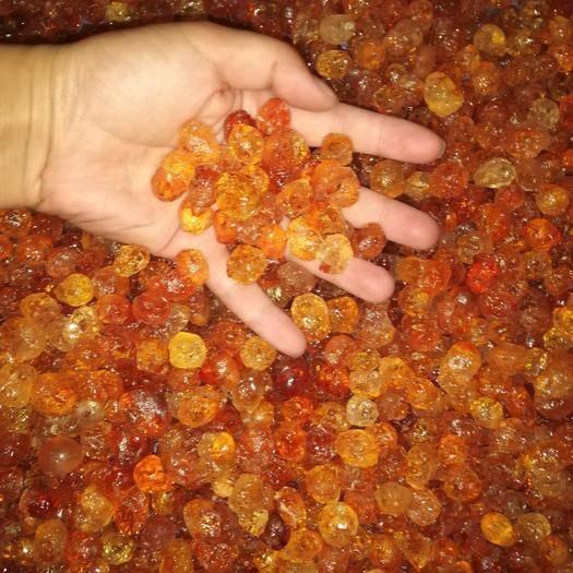 湖北省隨州市曾都區 精品桃膠  品種齊全