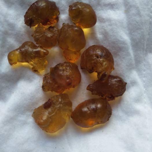 安徽省安慶市宜秀區 食用桃膠,野生桃膠,黃桃膠,安慶大山優質桃膠