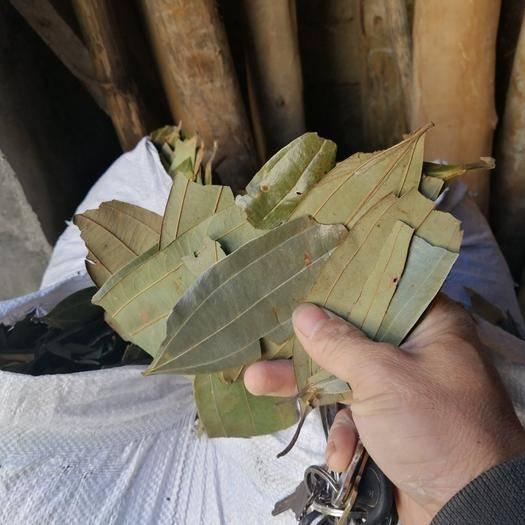 广西壮族自治区贵港市平南县普通桂皮 干桂叶,无杂质,绿豆青色