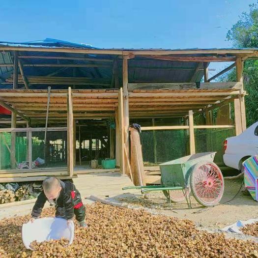 湖南省懷化市麻陽苗族自治縣有林地 合作 20~30年 100~500畝