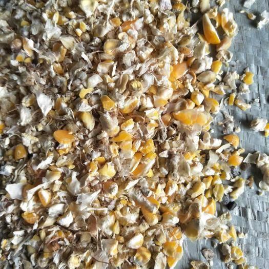 山东省聊城市东昌府区 碎玉米,鸡鸭鹅控食期饲料。