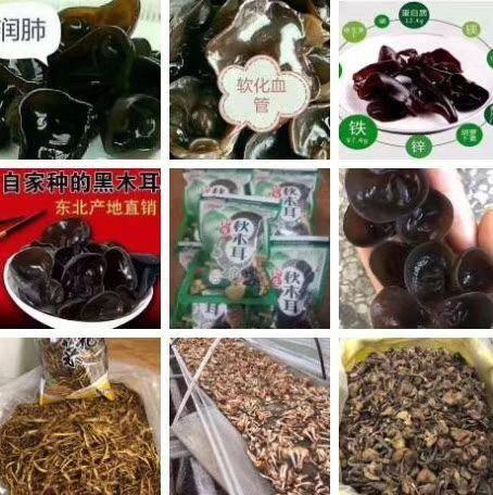 黑龙江省哈尔滨市香坊区 木耳蘑菇