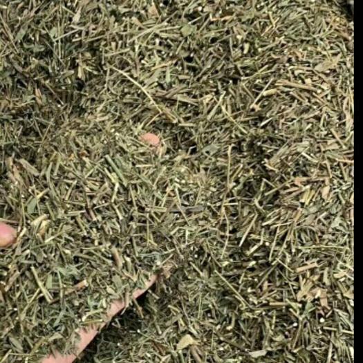 山西省陽泉市盂縣 現在大量柴胡稈