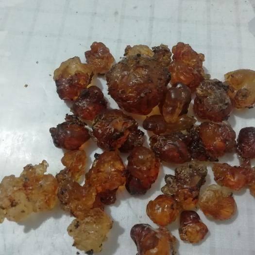 安徽省六安市霍山縣 優質桃膠,過1.5篩大顆粒!