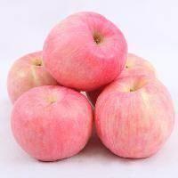 陕西省宝鸡市眉县红富士苹果 红富士