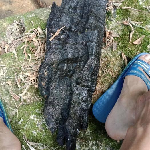 云南省西双版纳傣族自治州景洪市桃木 水浸木,懂行的联系