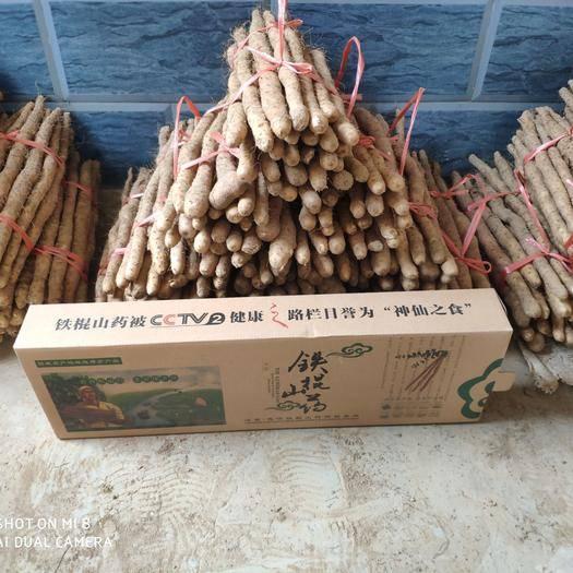 河南省焦作市温县 市面上铁棍山药虽多,但能吃到好的垆土铁棍山药却少之又少!我为