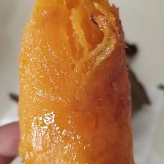 辽宁省沈阳市沈北新区 烟薯25批发零售