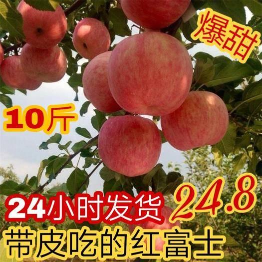 山西省运城市稷山县 红富士苹果10斤新鲜水果当季整箱山西现季应季冰糖心包邮丑苹