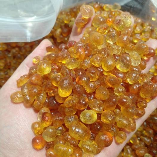 云南省昆明市官渡區 精品純黃桃膠1.2左右顆粒,賣相很好,有大貨10噸