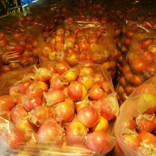 陜西省咸陽市禮泉縣 雙十一陜西禮泉紅富士蘋果特價全國包郵